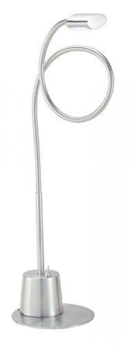 Eternity Extended Gooseneck Lamp in Satin Steel Model-5033-2